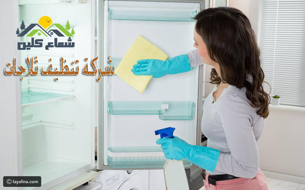 شركة تنظيف ثلاجات بالدمام